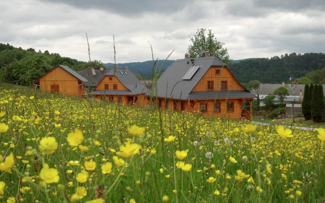 Spring time is coming. Refreshing spring stays in log cabins